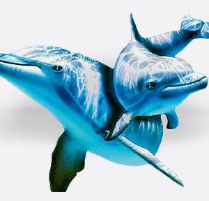imagen sticker delfines 1,35 x 1m