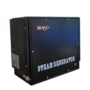 imagen generador de vapor intenso de 12 Kw
