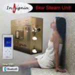 imagen generador de vapor Insignia 6 kw